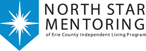 north star mentoring logo